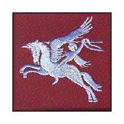 Pegasus Airborne Badge
